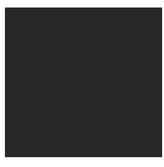 Social Mission